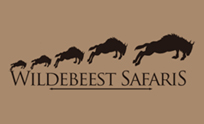 Wildebeest Safari | BG System Services Pvt. Ltd.